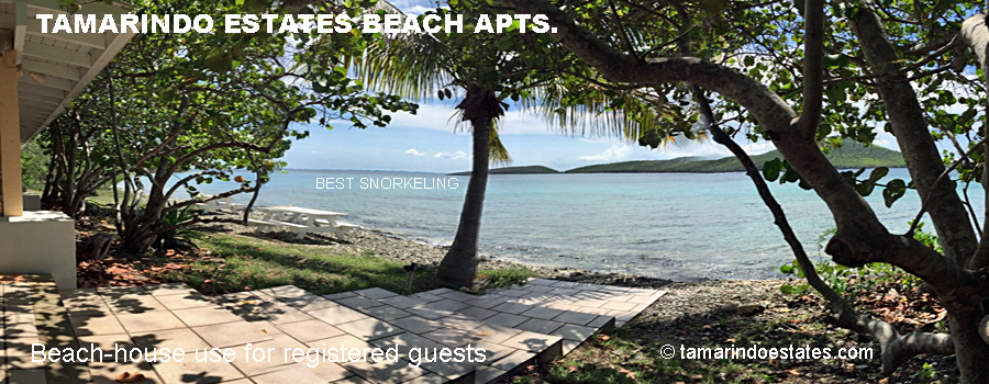 Beach house, Culebra's best                       walk-in snorkeling
