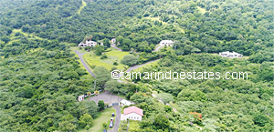 Aerial view                   Tamarindo Estates