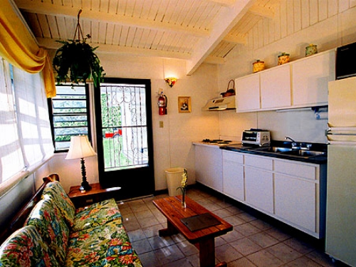 Typical             Living-Kitchen Area