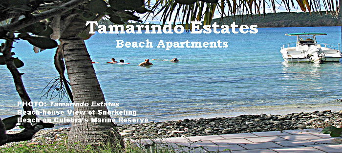 Tamarindo Estates' beach-house view of the snorkeling           beach