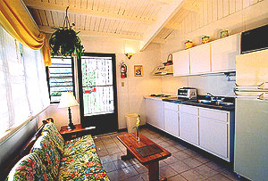 Typical iving-kitchen area