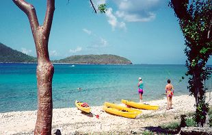 kayaking on Culebra's                     Marine Reserve