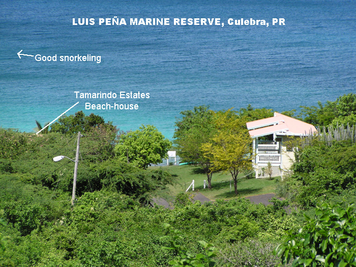 Marine Reserve as                   seen from a rental apartment